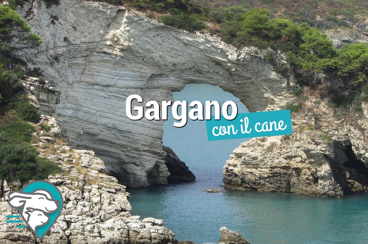 Vacanze nel Gargano con il cane o altri animali ammessi