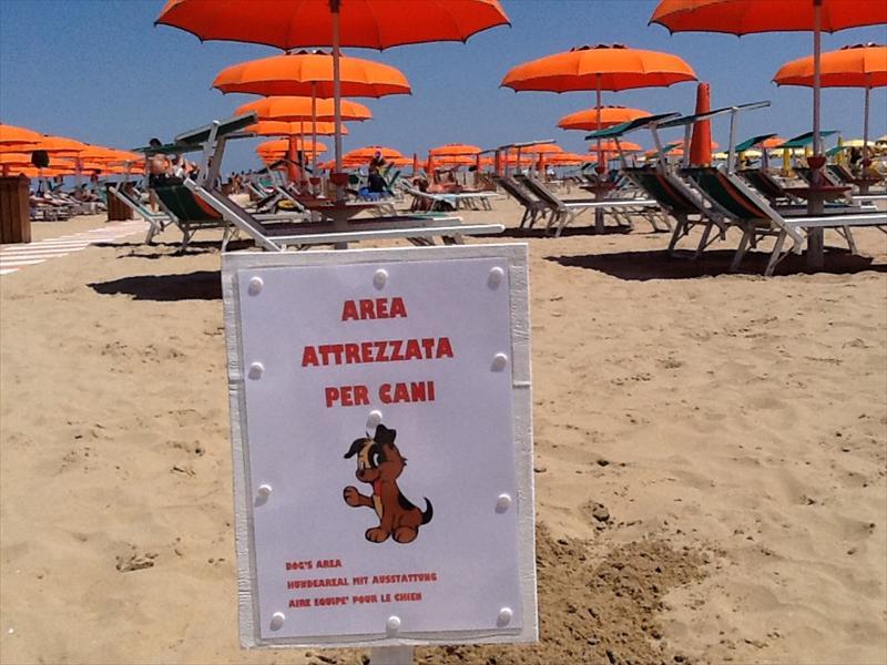 Bagno 84 Graziano Rimini | Rimini
