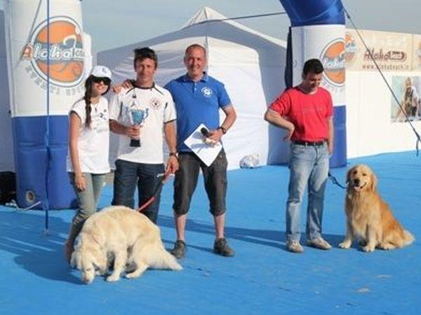 Spiagge Per Cani Ravenna Dog Beach E Stabilimenti