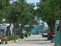 International Riccione Camping Village - Club del Sole